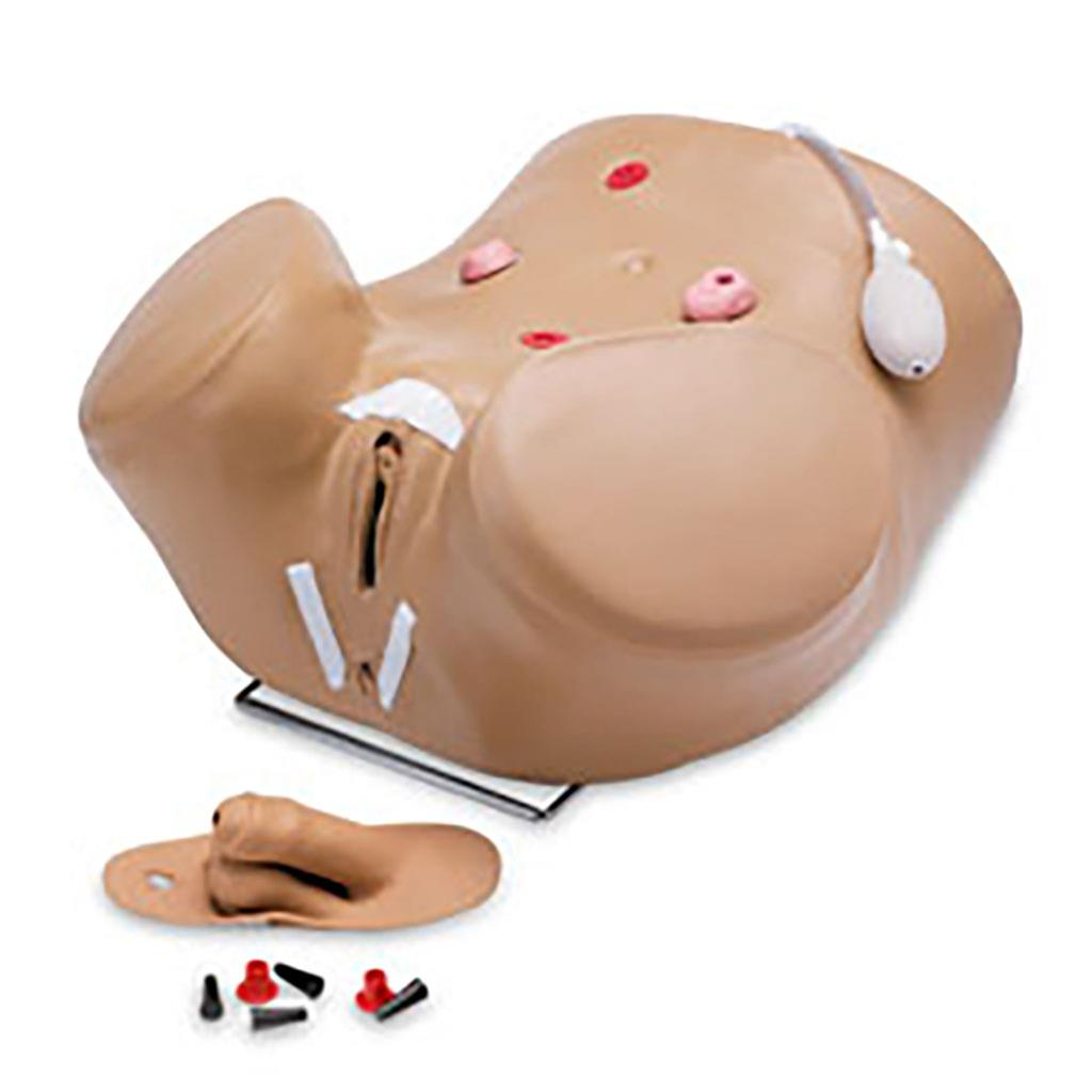 GAUMARD ADVANCED PATIENT CARE MALE AND FEMALE CATERISATION SIMULATOR