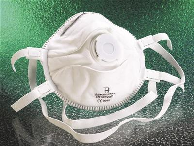 BEESWIFT P3 DUST MASK C/W VALVE (BBP3V)